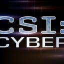 CSI_Cyber_Logo_500x281